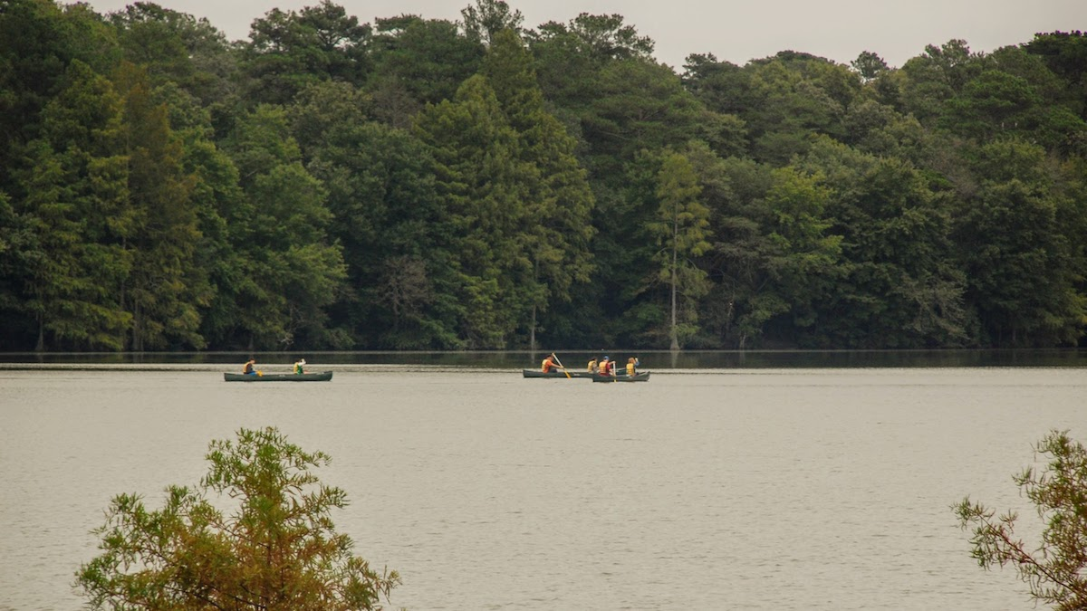 Take a chance kayaking in Delaware