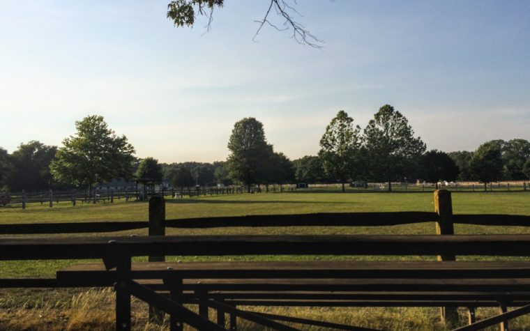What You Need to Know About the Wicomico Equestrian Center